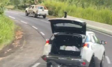 L'image du jour 16/06/20 - Accident -Martinique
