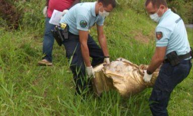 Le buste de Victor Schoelcher a été retrouvé en Guadeloupe...ses jours ne sont pas en danger