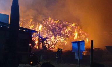 Incendie criminel à Holdex Environnement en Martinique
