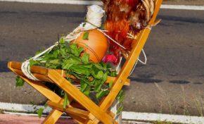 La saison des quimbois a démarré en Martinique