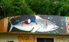 L'image du jour 20/08/20 - Martinique - Street art