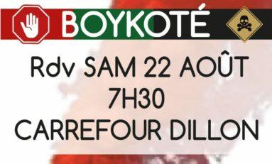 Boycott Bernard Hayot en Martinique : les militants anti-chlordécone reprennent du service