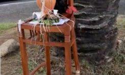 Quimbois vivant au rond-point près du siège du Groupe Bernard Hayot en Martinique