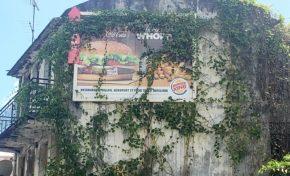 La nature a horreur du vide...même en Martinique