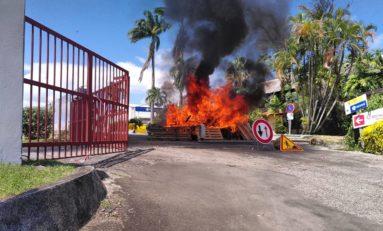 L'image du jour 10/10/20 -Martinique - Chlordécone