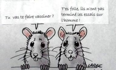 L'image du jour 29/11/20 - Vaccin - Covid-19