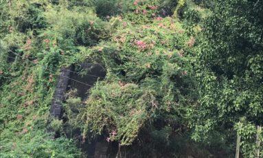 Martinique…ce que la ville de Fort-de-France fait avec : la FONTAINE  GUEYDON