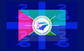 Sondage. Martinique : quel drapeau pour vous représenter ?