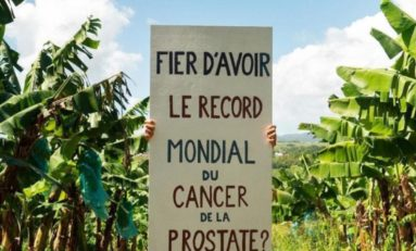 Pauvre Martinique !