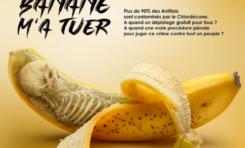L'image du jour 23/01/21 - Banane - Guadeloupe- Martinique - Chlordécone