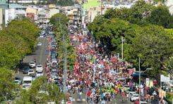L'image du jour 27/02/21 - Chlordécone - Martinique