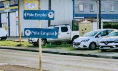 Tous les chemins mènent à Pôle Emploi en Martinique