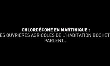 8 mars 2021 Journée internationale des droits des femmes : 3 femmes impactées par le scandale du chlordécone libèrent la parole en Martinique