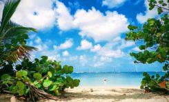La Martinique c'est aussi ça !