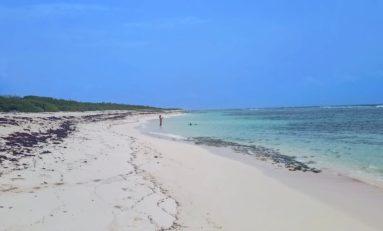 La plage des salines... à Saint François en Guadeloupe