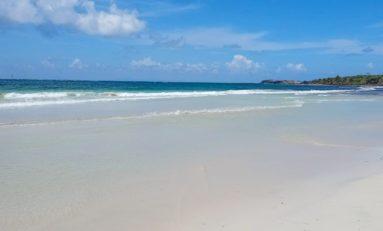 Martinique : attention...Trabaud