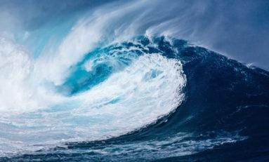 Tsunami politique chez Les Républicains (LR) en Martinique