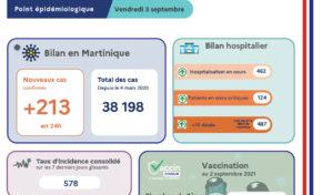 Covid-19 en Martinique : 487 morts depuis le début de la pandémie